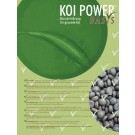 Koi-Power Basis ca. 6mm Lins